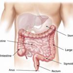 Stoffwechsel anregen mit Tabletten – wichtigste Fakten