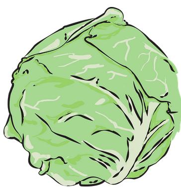 Kohlsuppendiät – Wie hilft die Kohlsuppendiät beim abnehmen