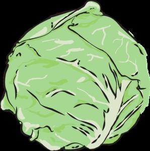 Kohlsuppen Diät
